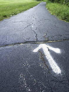 White arrow painted on asphalt path in park (foreground focus)